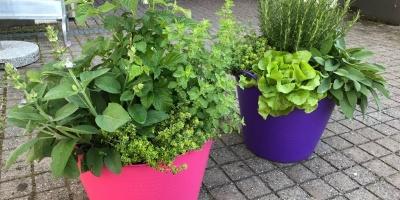 Tubtrugs Gardening